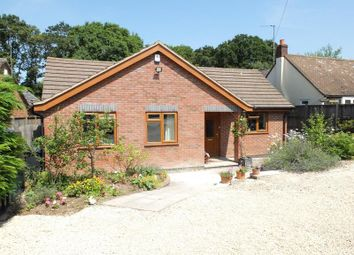 Thumbnail 3 bed bungalow to rent in Oak Hollow, Bromsberrow Heath, Ledbury, Gloucestershire