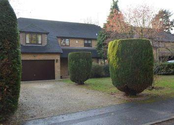 Thumbnail 4 bed detached house for sale in Oak Tree Copse, Tilehurst, Reading, Berkshire