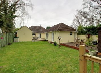 Thumbnail 4 bed bungalow for sale in Tyneham Close, Sandford, Wareham