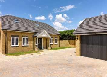 Thumbnail 3 bed detached house to rent in Weald Place, Worthing