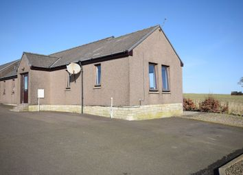 Thumbnail 3 bedroom detached house to rent in West Croft, Carmyllie, Angus