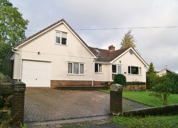Thumbnail 4 bed detached house to rent in Prospect Hill, Okehampton