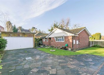 Thumbnail 3 bed detached bungalow for sale in Cedar Close, Epsom, Surrey