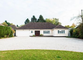 Thumbnail 4 bed detached bungalow for sale in Broadmead, Hook End, Brentwood