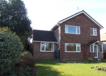 Thumbnail 4 bed detached house to rent in Church Hill, Burstall