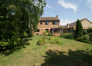 Thumbnail 4 bed detached house for sale in The Paddocks, Halesworth