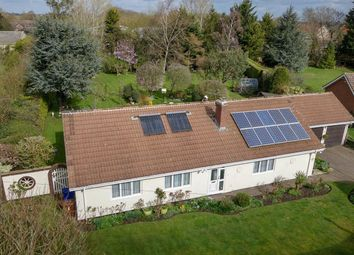 Thumbnail 4 bed detached bungalow for sale in The Green, Chedburgh, Bury St. Edmunds