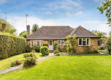 Thumbnail 3 bed detached bungalow for sale in Ockley Road, Ewhurst, Cranleigh