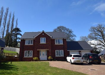 Thumbnail 4 bed detached house to rent in Pinn Hill, Exeter, Devon