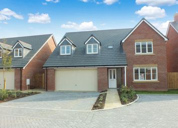 Thumbnail 4 bed detached house for sale in Queens Close, Watchfield