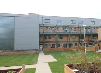 Thumbnail 2 bed flat to rent in Flamsteed Close, Cambridge