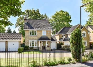 Thumbnail 4 bedroom detached house for sale in Paget Close, Wellington Park, Camberley
