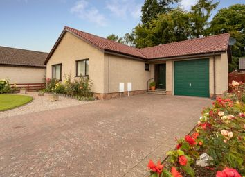 Thumbnail 2 bed bungalow for sale in Altamount Road, Blairgowrie, Perthshire