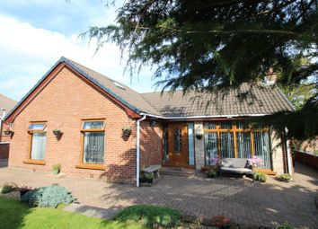 Thumbnail Bungalow for sale in Craigowen Road, Carrickfergus