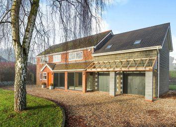 Thumbnail 5 bedroom detached house for sale in Hale Road, Bradenham, Thetford, Norfolk