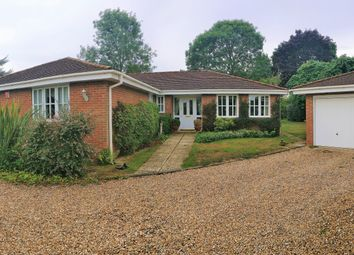 Thumbnail 4 bed detached bungalow for sale in Rosemary Lane, Rowledge, Farnham, Surrey