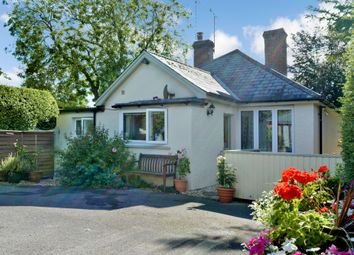 Thumbnail 4 bed detached bungalow for sale in Easton Royal, Wiltshire