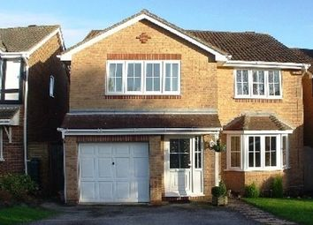 Thumbnail 4 bed detached house to rent in Burmese Close, Whiteley, Fareham