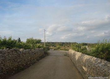 Thumbnail Property for sale in Bombarral, 2540, Portugal