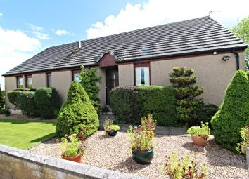 Thumbnail 4 bed detached bungalow for sale in Lochside, Montrose