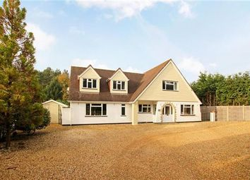 Thumbnail 5 bed detached house for sale in The Firs, Matchams Lane, Christchurch