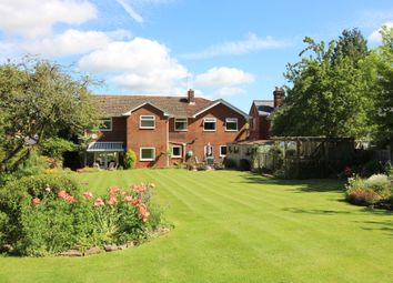 Thumbnail 5 bed detached house for sale in Bishop's Sutton, Alresford, Hampshire