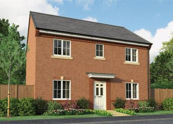 "Thumbnail 4 bedroom detached house for sale in ""The Buchan"" at Park Road South, Middlesbrough"