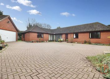 Thumbnail 5 bed detached bungalow for sale in Lady Lane, Hadleigh, Suffolk