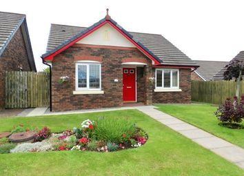 Thumbnail 2 bed detached bungalow for sale in The Beeches, Maryport, Cumbria