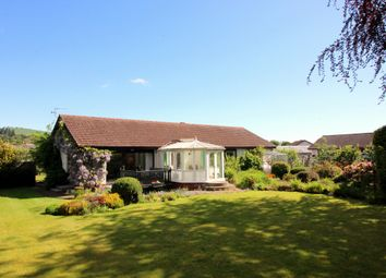Thumbnail 2 bed bungalow for sale in South Street, Blairgowrie