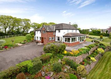 Thumbnail 4 bedroom detached house for sale in Longdown, Exeter