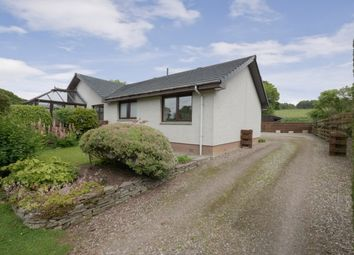 Thumbnail 4 bed cottage for sale in Pitscandly, Forfar, Angus