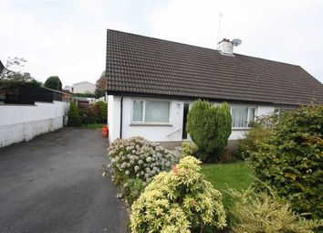 Thumbnail 3 bed semi-detached house to rent in Beechgrove, Ballynahinch