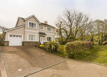 Thumbnail 4 bed detached house for sale in Creggan Aashen, Glen Maye, Isle Of Man