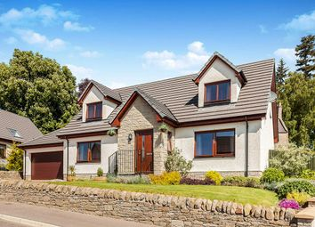 Thumbnail 4 bed detached house for sale in Bearehill Loan, Brechin