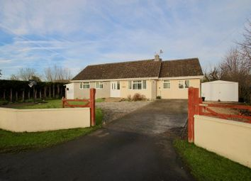 Thumbnail 4 bed detached bungalow for sale in Martin Street, Baltonsborough, Glastonbury