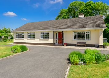 Thumbnail 4 bed detached house for sale in Glascarn Lane, Ratoath, Ratoath, Meath