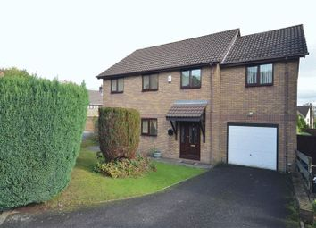 Thumbnail 4 bed detached house to rent in Primrose Court, Ty Canol, Cwmbran