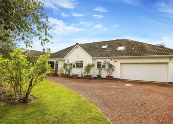 Thumbnail 5 bed detached bungalow for sale in Avondale Road, Ponteland, Newcastle Upon Tyne