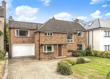 Thumbnail 5 bed detached house for sale in Broadgates Avenue, Hadley Wood, Hertfordshire