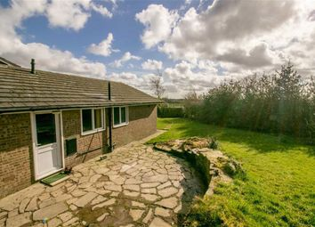 Thumbnail 3 bedroom bungalow to rent in Thursford Grove, Blackrod, Bolton