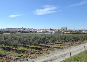 Thumbnail Land for sale in L354, Building To Renovate And Land Of 25.700 Sqm. Alentejo, Portugal, Portugal