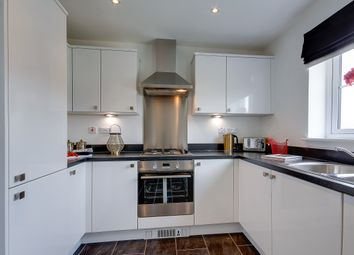 "Thumbnail 3 bed detached house for sale in ""The Cromarty"" at Dunrobin Road, Airdrie"