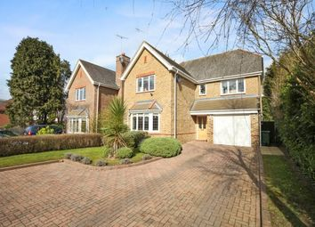 Thumbnail 5 bedroom detached house to rent in March Road, Weybridge