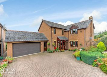 Thumbnail 5 bed detached house for sale in Bramble Close, Newtown, Powys