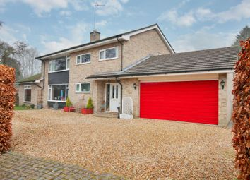 Thumbnail 4 bed detached house for sale in The Dell, Vernham Dean