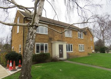 Thumbnail Studio to rent in Oakfield Court Oakfield Road, Finchley Central