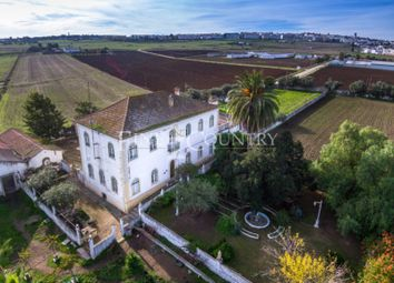 Thumbnail 13 bed finca for sale in 7800 Beja, Portugal