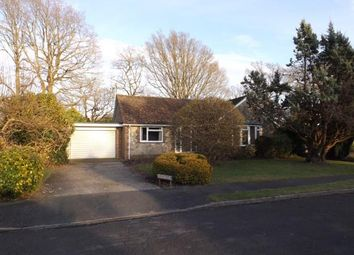 Thumbnail 3 bed bungalow for sale in Nightingales, West Chiltington, Pulborough, West Sussex