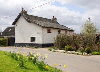 Thumbnail 3 bed cottage for sale in Church Street, Carbrooke, Thetford